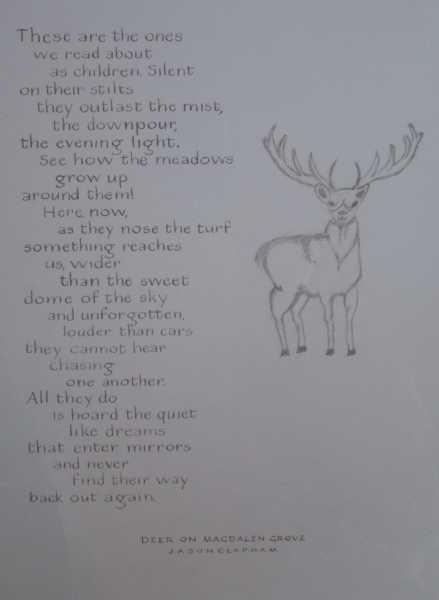 Jason Clapham Deer on Magdalen Grove Gail McDonald_c